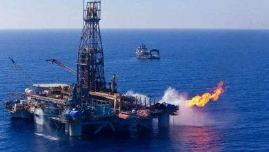 Photo of هبوط أسعار النفط اليوم