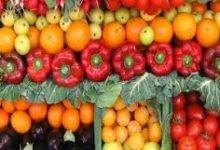 Photo of الزراعة تنفي 5 شائعات أبرزهم ..تلف المحاصيل الزراعية و توقف تطبيق منظومة الحيازة الإلكترونية