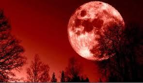 Photo of ظاهرة فلكية نادرة الليلة القمر يحجب المريخ