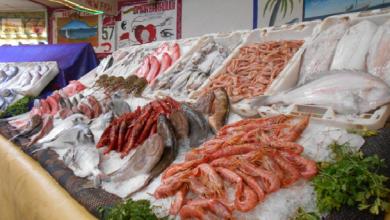 Photo of استقرار أسعار السمك بسوق العبور اليوم