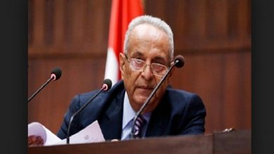 Photo of تشريعية النواب توافق علي تعديلات أتفاقية المساعدة بين مصر وأمريكا بشأن شمال سيناء