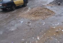 Photo of أمطار ورياح تضرب محافظة الغربية اليوم الجمعة