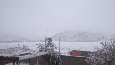 "Photo of شاهد صور…""زي أوروبا"" الثلوج تغطي جبال سانت كاترين"