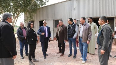 Photo of تطوير مشروع الدواجن بتكلفة 15 مليون جنيه ببنى سويف