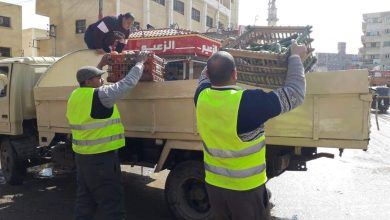 Photo of رفع 709 حالة إشغال بنطاق 3 مراكز وتحرير 43 إنذار بكفر الدوار (صور)