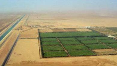 "Photo of فيديو.. رئيس ""الريف المصري"": طرح 108 ألف فدان أراضى جديدة بمشروع الـ1.5 مليون فدان خلال أيام"