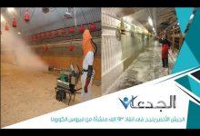 Photo of فيديو.. الخدمات البيطرية تنتهي من تطهير ٩٣ ألف منشأة من فيروس كرونا
