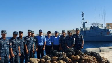 Photo of القوات البحرية تنجح فى ضبط كمية كبيرة من المواد المخدرة بنطاق الأسطول الجنوبى …