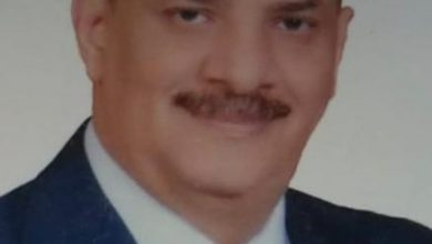 "Photo of ""أحمد شمس"" رئيسا لشعبة شركات السياحة بالاسكندرية"