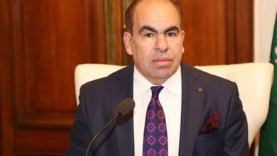 Photo of الهضيبي: مشاركة الشباب في انتخابات مجلس الشيوخ هو ضمان حقيقي لتمثيل قوي