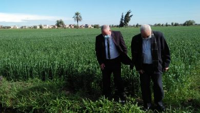 Photo of رئيس قطاع الخدمات بالوزارة يتابع محصول القمح بزراعة البحيرة
