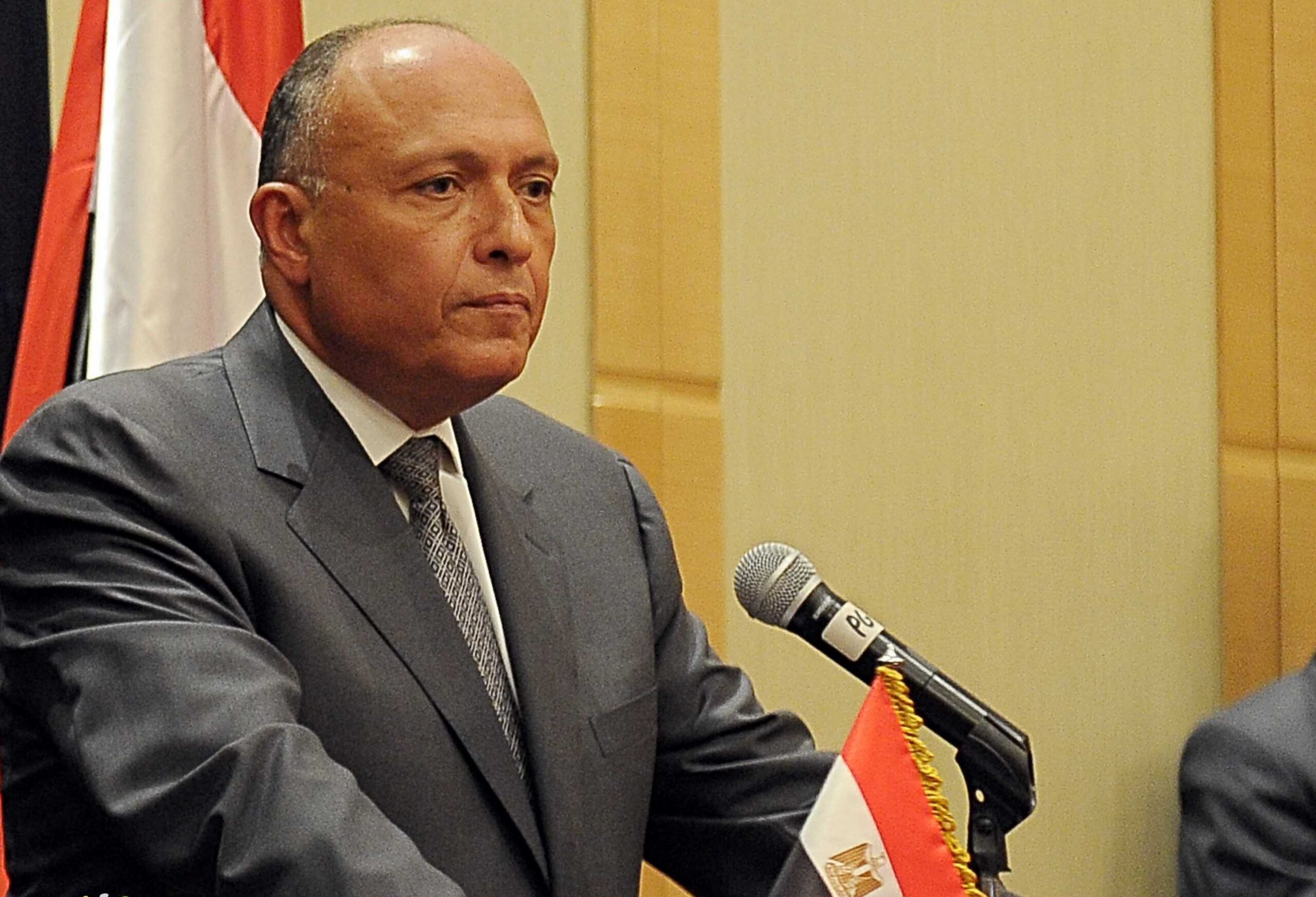 """""""شكري"""" يؤكد على أهمية تكثيف الجهود لمكافحة التنظيمات الإرهابية في الساحل"""
