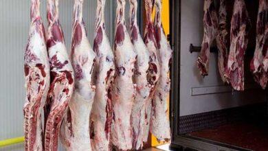 Photo of ننشر أسعار اللحوم اليوم في الأسواق المصرية